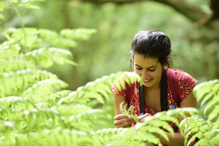 RSPB staff member looking at fern leaf