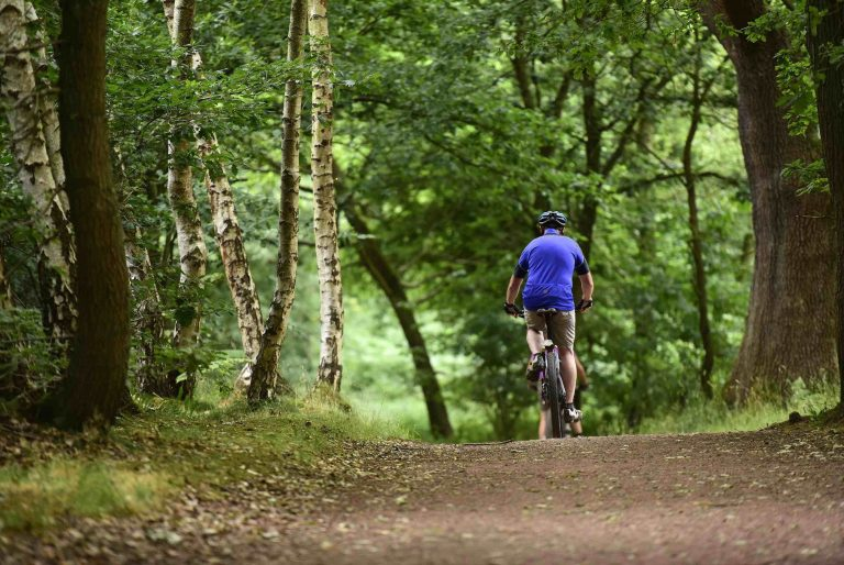 Man and woman cycling along woodland trail